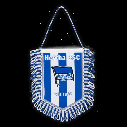 Banner blau-weiss